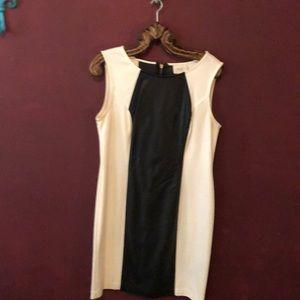 Black/ White Dress